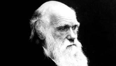 Classroom Activity: Darwin Day - image